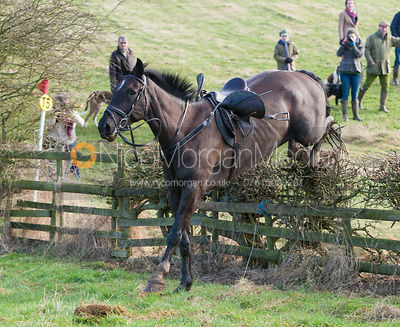 Horse & Hound photos