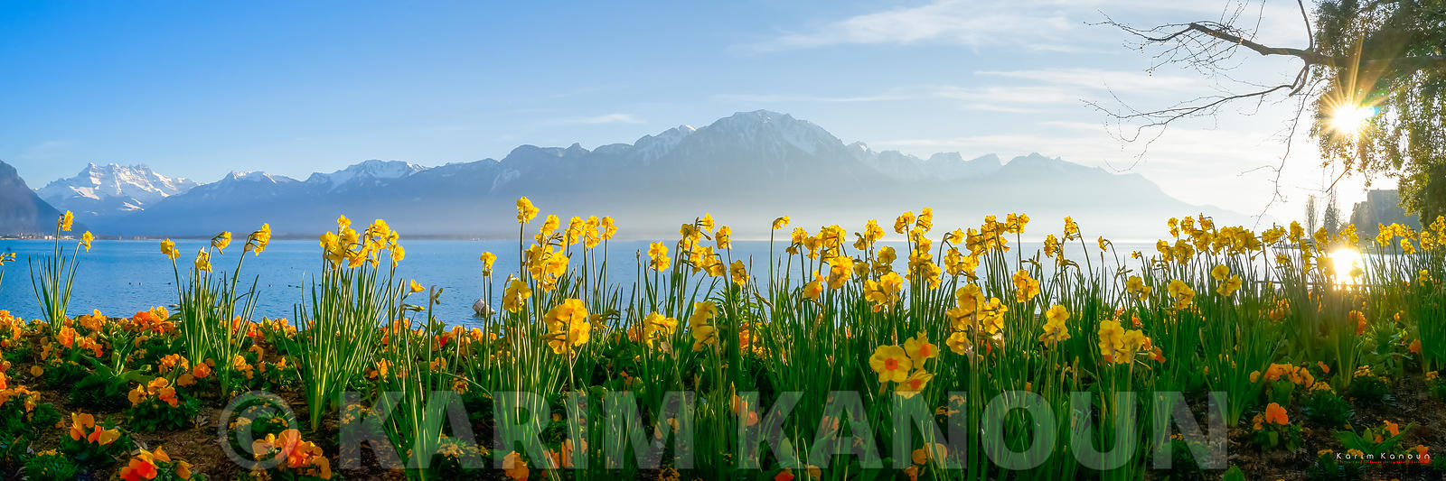 The Alps and Lac Léman from Montreux during the spring season