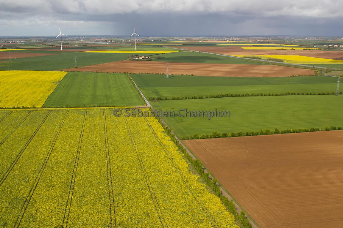 Photographie Paysage Agricole De Plaine Agricole