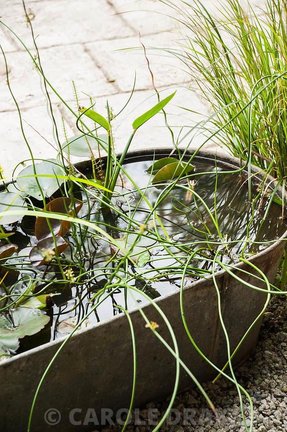 Watergarden baths