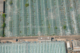 Aerial view over industrial greenhouses