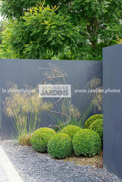la phototh que les plus beaux jardins jardin contemporain boule de buxus sempervirens buis. Black Bedroom Furniture Sets. Home Design Ideas