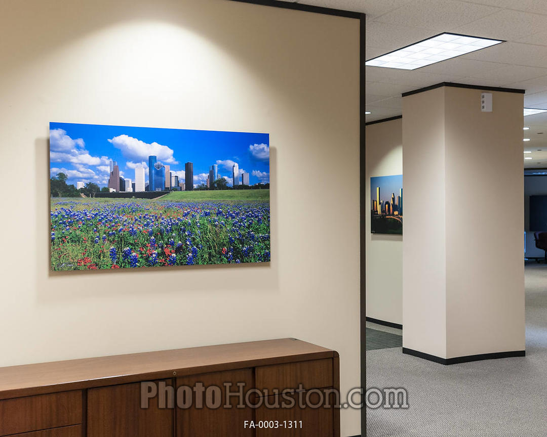 Photo Houston | Color photography displayed as office art with float ...