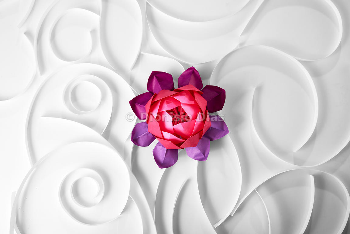 Stock Photos Dionisio Dias Lotus Flower Origami From Above