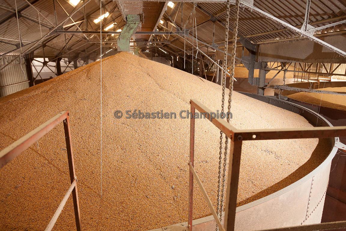 photographie remplissage d une cellule de stockage de mais grain agricole. Black Bedroom Furniture Sets. Home Design Ideas