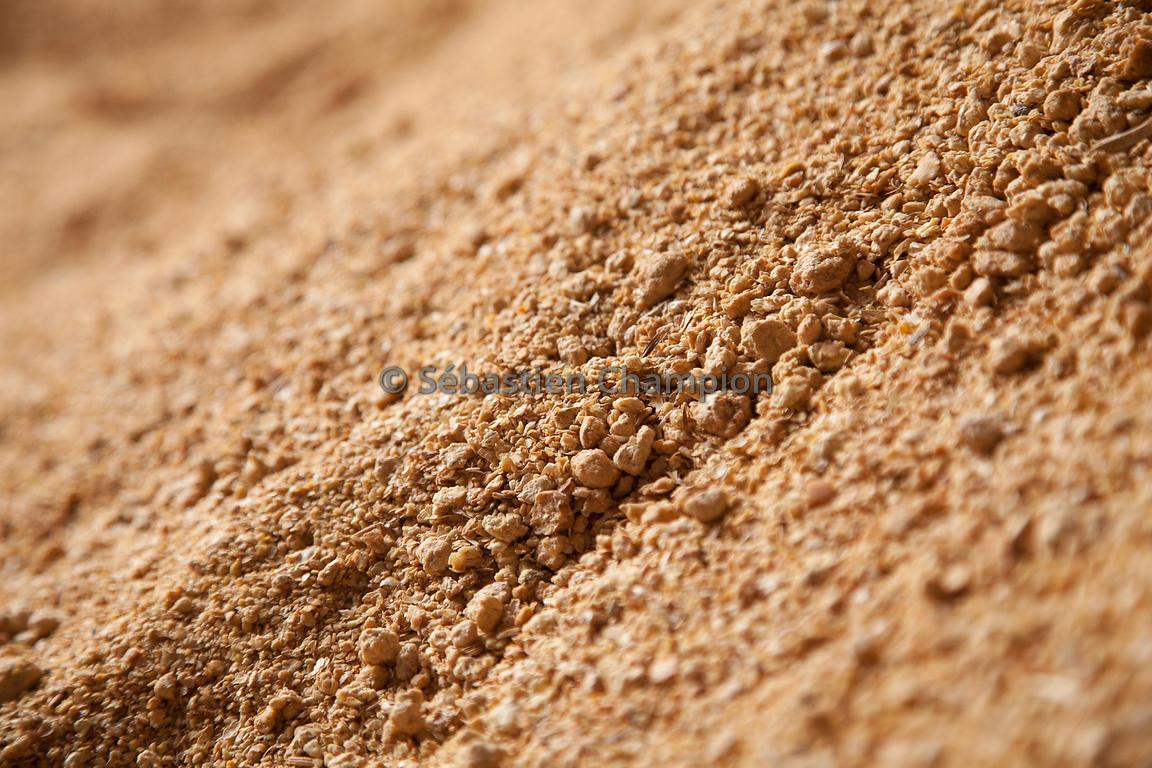 Photographie tourteau de soja en vrac agricole - Cuisiner des pousses de soja ...