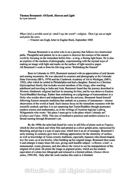 5 page essay
