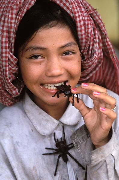 Cambodian Food Spiders