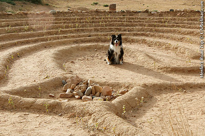 Merlin Frenchy's Field Park Labyrinth