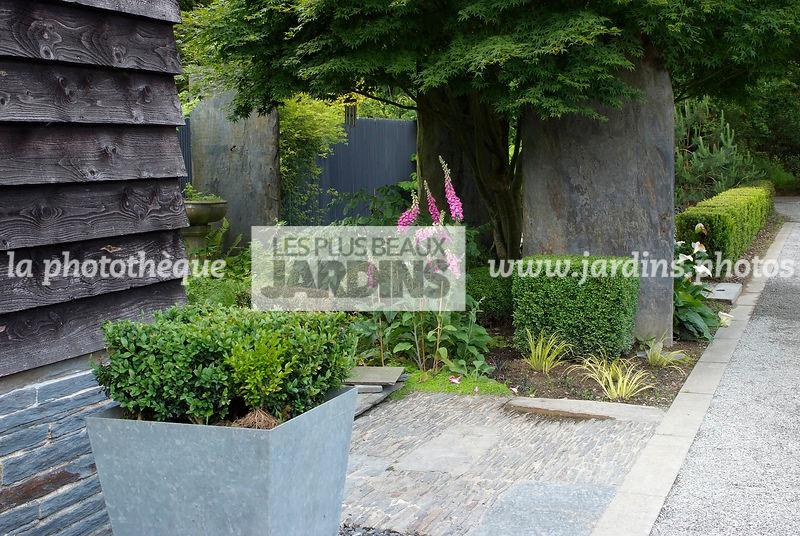 la photothèque   LES PLUS BEAUX JARDINS   Jardin contemporain. Pot ...