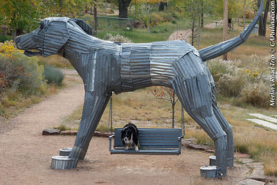 Merlin on Railyard Park Dog Swing