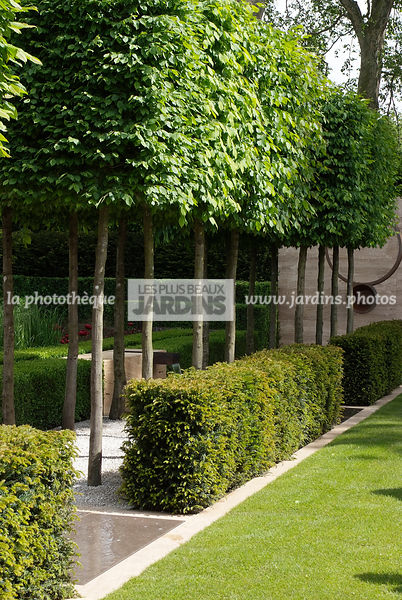 la phototh que les plus beaux jardins jardin contemporain jardin design carpinus betulus. Black Bedroom Furniture Sets. Home Design Ideas