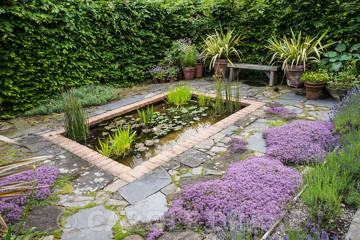 Bon Il Vivaio, A Small Enclosed Garden With A Rectangular Pond And  Mediterranean Plants Including Lavenders