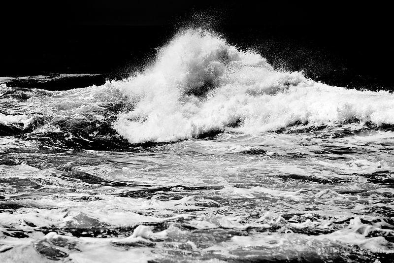 ❏ Fine Art Photography Prints | | | | | Point Lobos California ...
