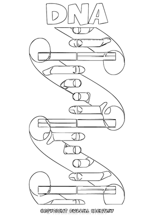 dna structure coloring pages - photo#19