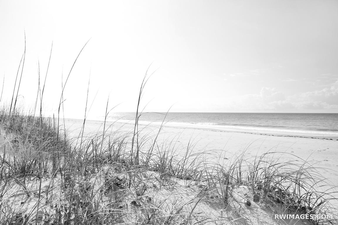 Photo Print of OCRACOKE ISLAND BEACH CAPE HATTERAS NATIONAL ...