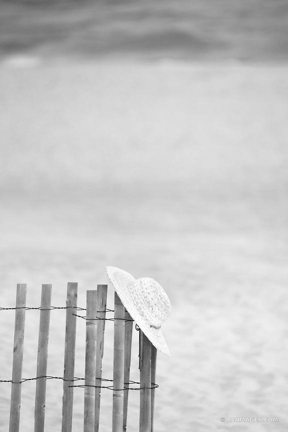 Beach the hamptons long island new york black and white vertical