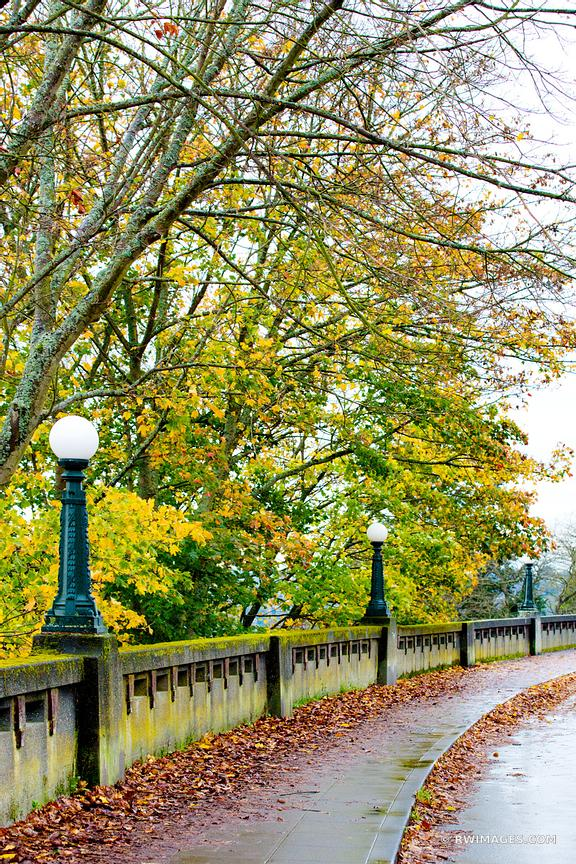 Photo Print of SEATTLE MARSHALL PARK SEATTLE FALL COLOR VERTICAL ...