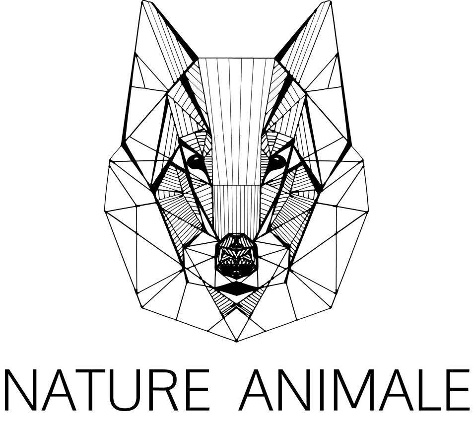 nature animale chienschatschevauxfauvesoiseaux