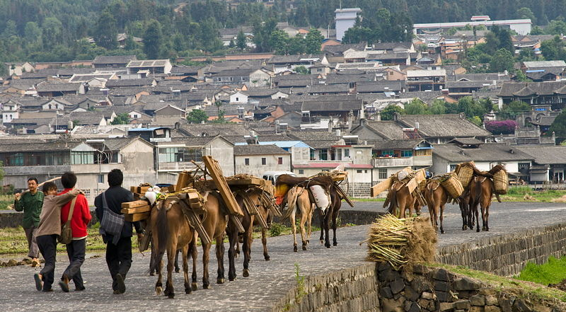 Horse caravan, Heshun