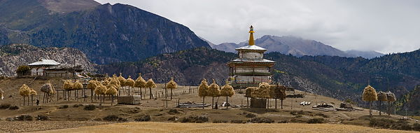 Tibetan haystacks