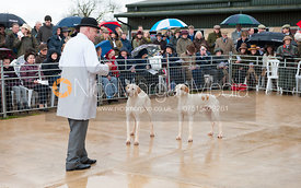 The 2012 Cottesmore Hunt Puppy Show