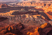 View of the Colorado River and Canyonlands National Park from Dead Horse Point at sunrise, Dead Horse Point State Park, Utah, USA