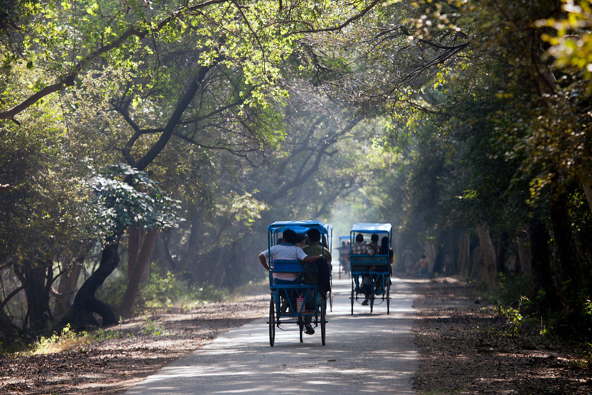 bharatpur park transport