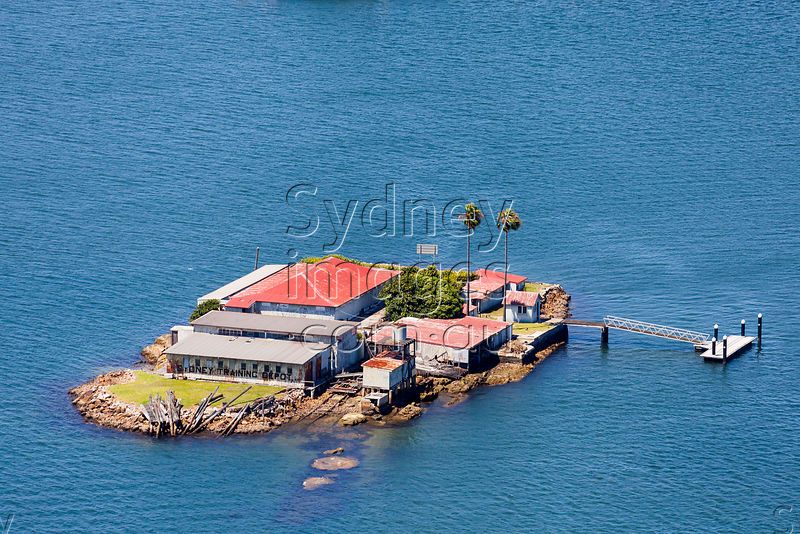 Sydney Aerial Photography - Snapper Island, Sydney Harbour