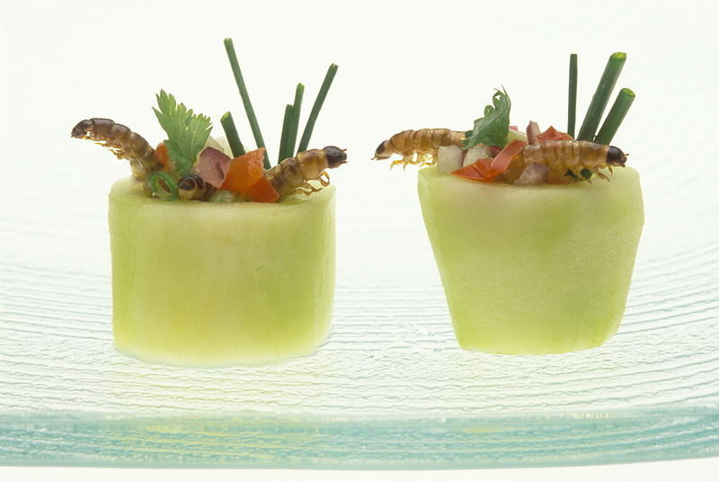 Michael freeman photography canapes in the form of for Canape examples