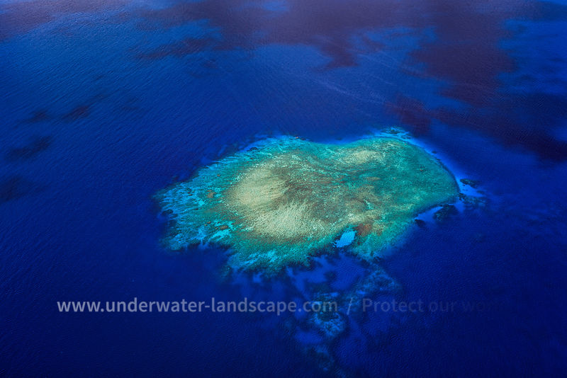 Aerial photo of a reef in the lagoon of Mayotte.