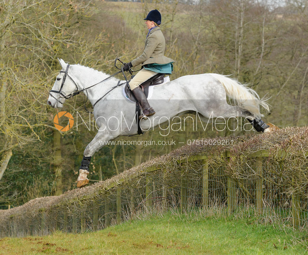 Image Jumping A Hedge Photography By Nico Morgan Media