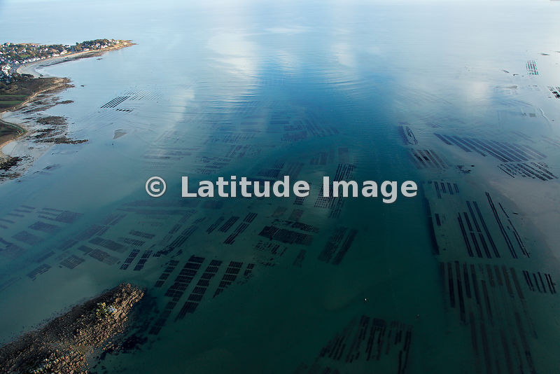Underwater Mussel Growing Beds, Bretagne