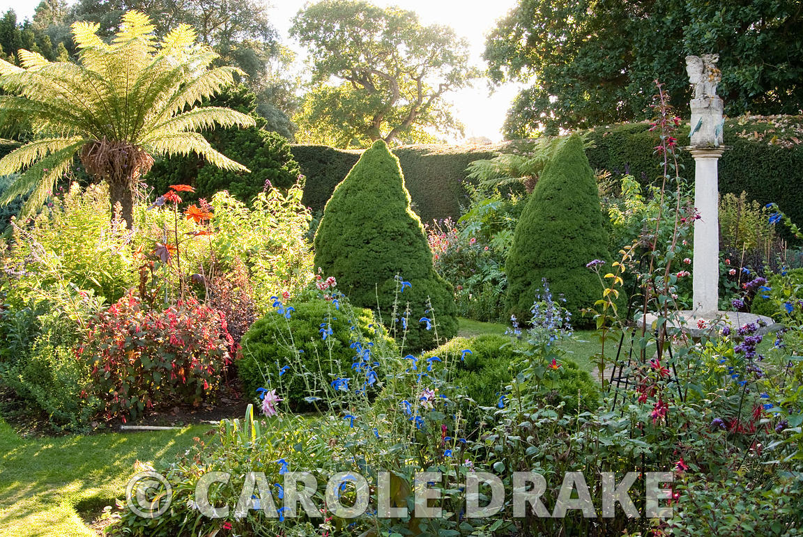 The Sundial Garden With Late Afternoon Sun Illuminating Tree Ferns, Conical  Piceas And Exotic Herbaceous
