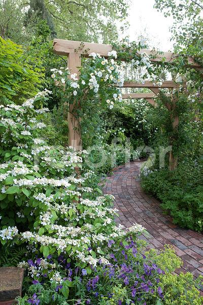 Photo de Allee de jardin fleurie et pergola de roses - fotoflor ...