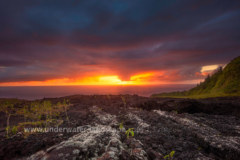 picture of the reunion island-Gabriel Barathieu - Sunrise at the Grand Brulé