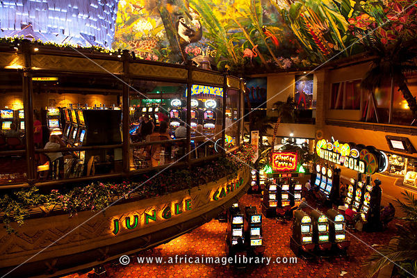 Sun city south africa casino profits of gambling