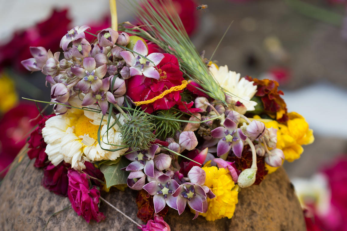 Brett Cole Photography Flowers And Wheat Adorn A Small Stone Idol