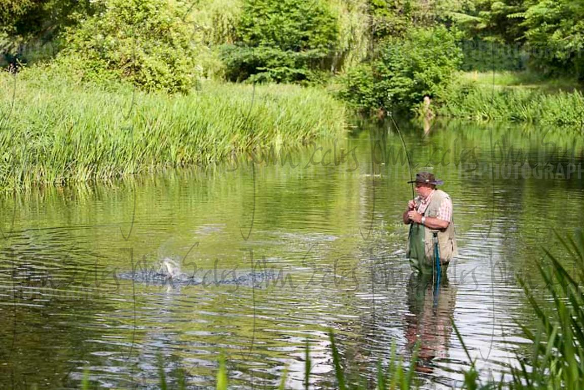Photo Gallery Fly fishing on River Nadder, Wilton House.