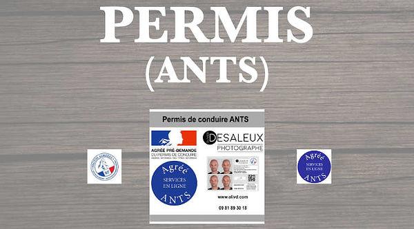 studio photo olivier desaleux photo d 39 identit ants permis de conduire. Black Bedroom Furniture Sets. Home Design Ideas