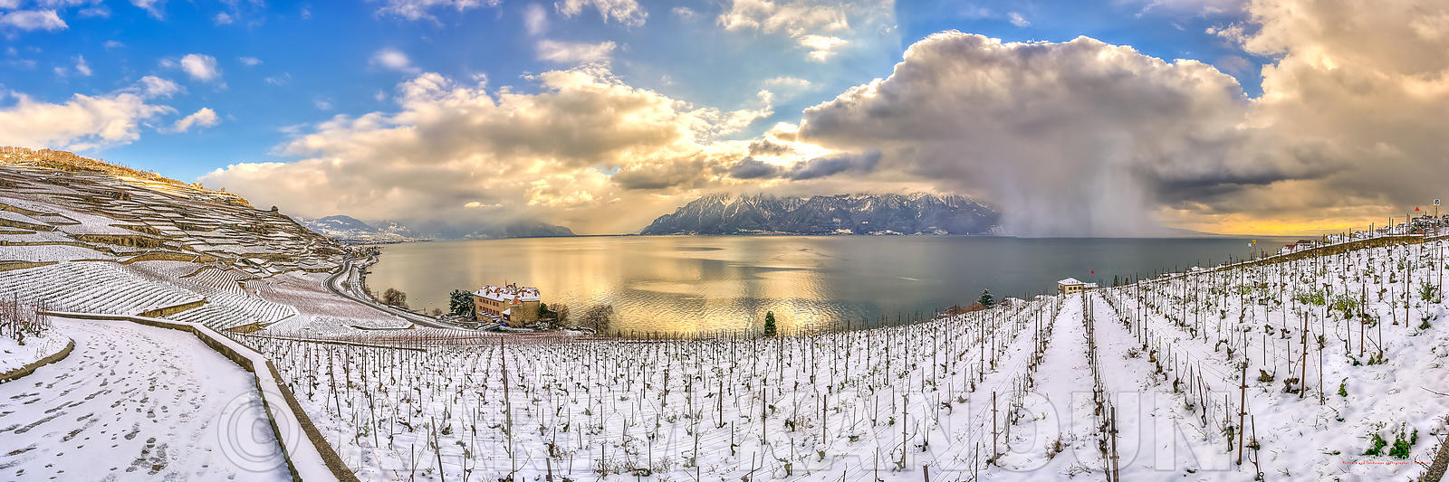 Snowy vineyard with a snow storm in the lake