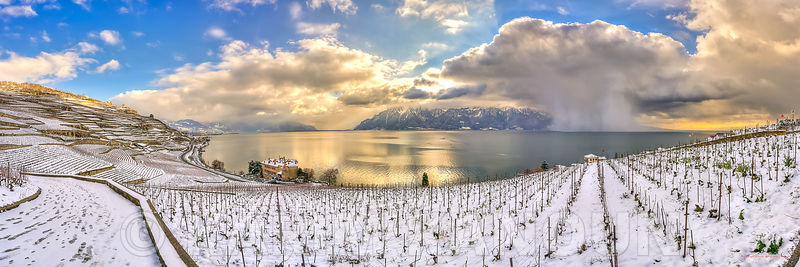 Panorama - Lavaux - Snowy vineyard with a snow storm