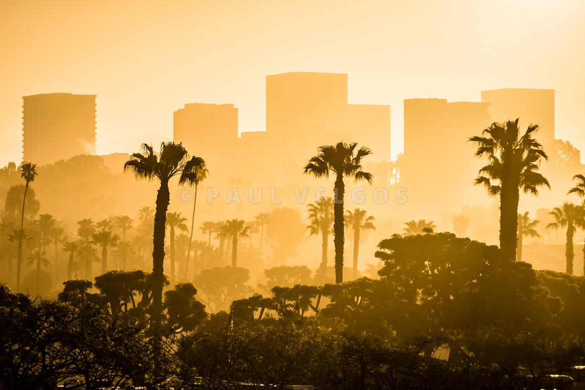 Image: Newport Beach Skyline Morning Sunrise Picture Large Canvas ...