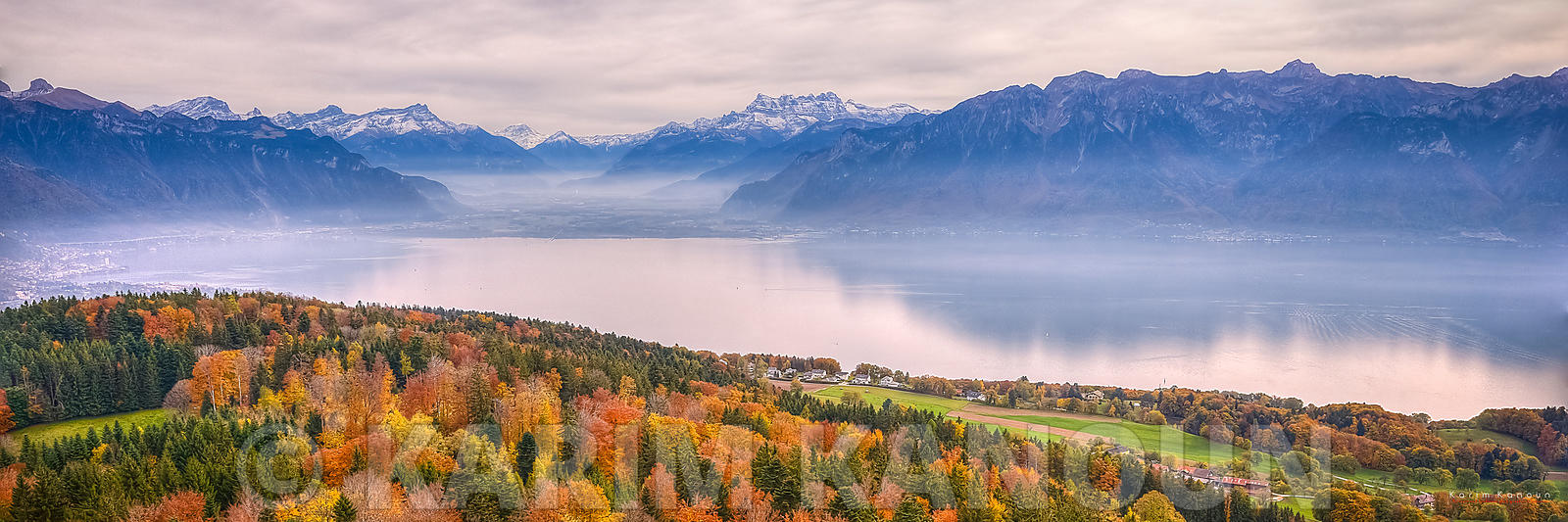 Autumn colors tree carpet with the Swiss Alps. View of the left part of Lake Geneva from Mont Pèlerin