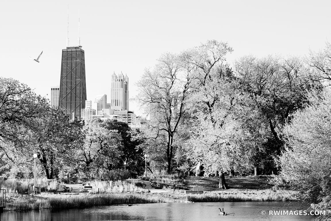 Photo print of lincoln park chicago black and white print for Buy fine art photography