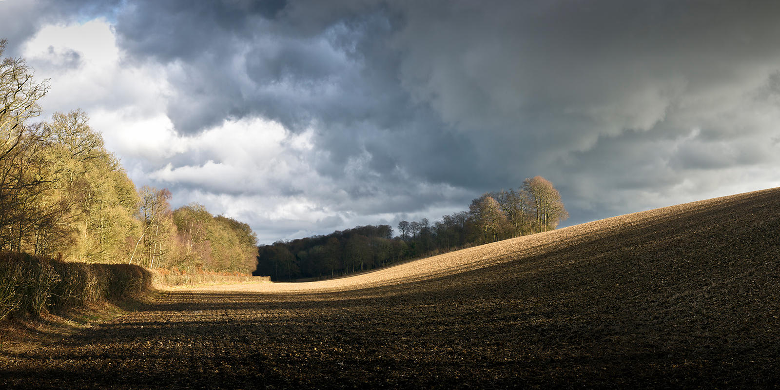 Winter field with showers