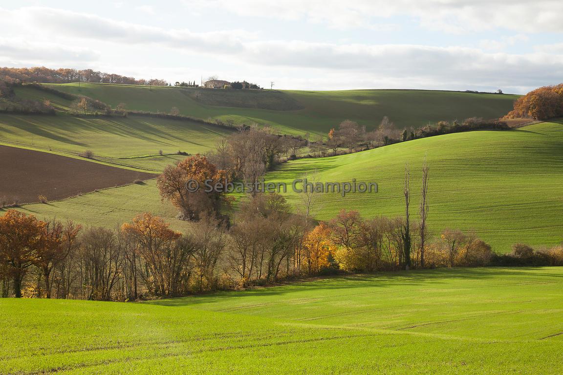 paysage du gers - Photo