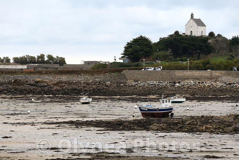Olynea photos port de roscoff for Agence paysage bretagne