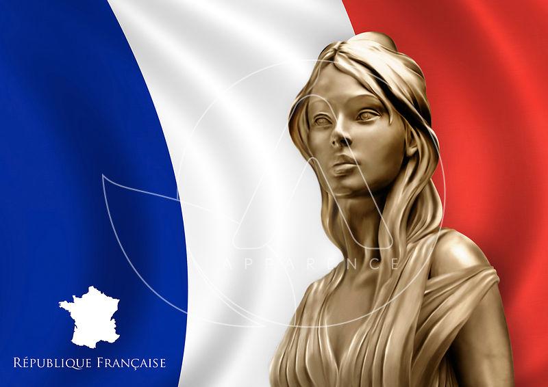 Résultats de recherche d'images pour «drapeau france»