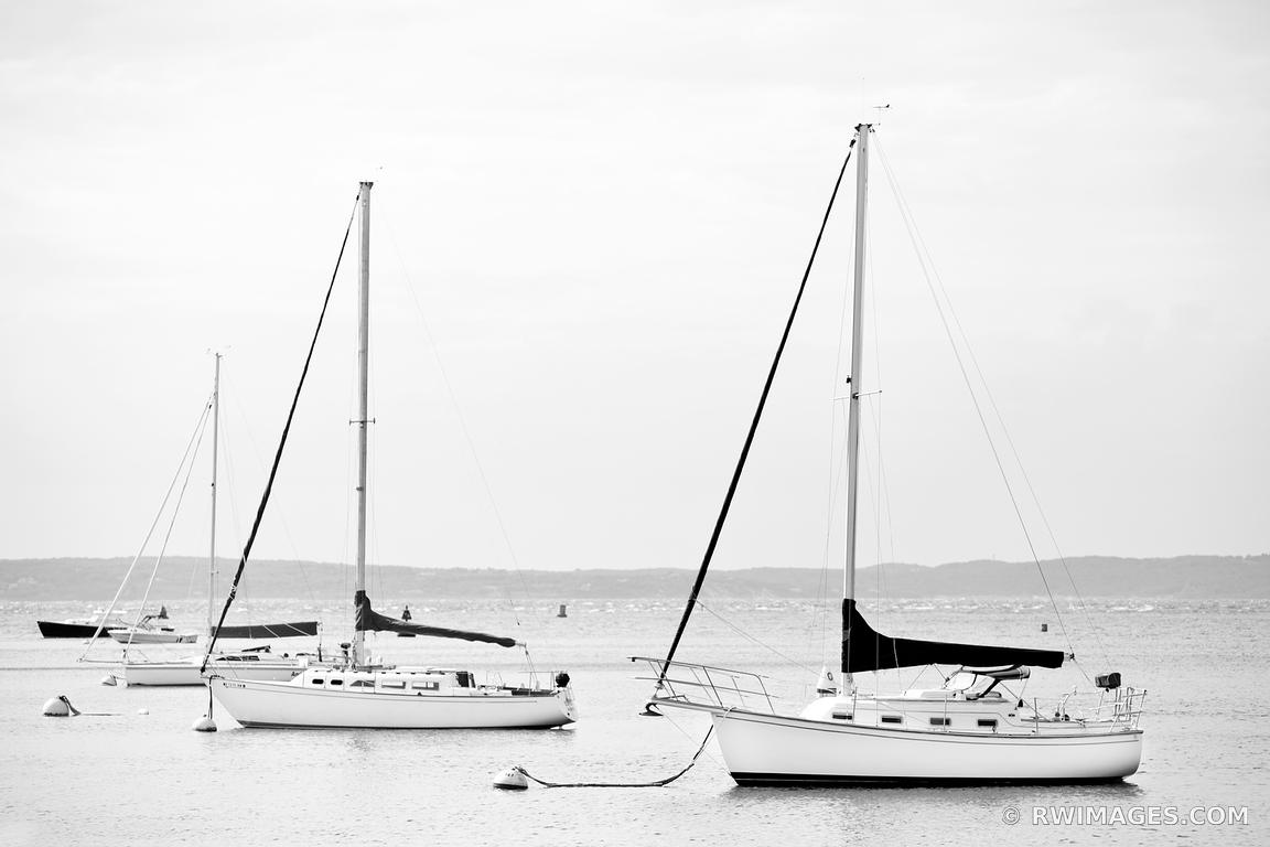 photo print of sailboats in harbor woods hole cape cod